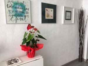 Escuela de Zentangle en Madrid